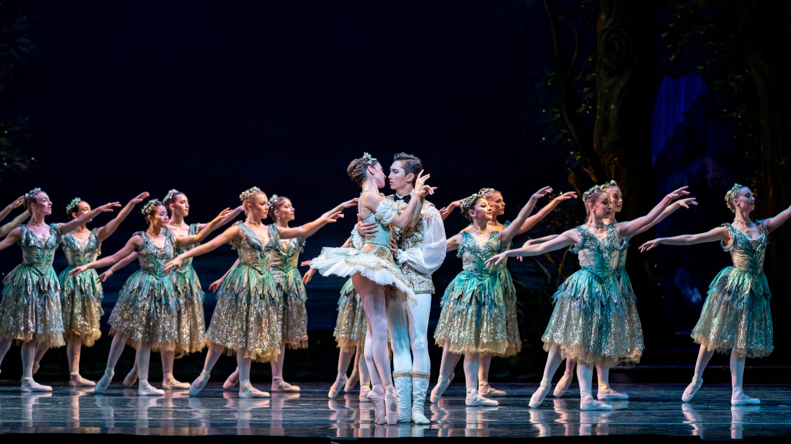 Act 2 of The Sleeping Beauty - corps de ballet dancers in the background in arabesque, with Aurora and Prince partnering in front.